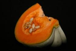 pumpkin-w250